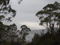 Franklin-Gordon Wild Rivers National Park, Tasmania Stock Photo