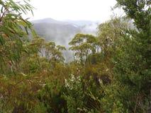 Franklin-Gordon Wild Rivers National Park, Tasmania Stock Photos