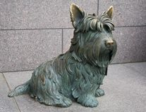 Franklin Roosvelt's Dog. A sculpture of Franklin Delano Roosvelt's dog at a memorial in Washington DC Stock Photos