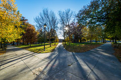 Franklin Square Park During Autumn in Baltimore, Maryland.  royalty free stock photo