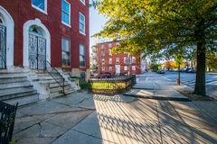 Franklin Square Park During Autumn in Baltimore, Maryland.  stock photo