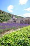 Frankreich - Abbaye de Senanque Stockbilder