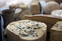 Frankreich, Auvergne, Käse lizenzfreies stockfoto