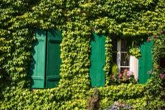 Frankreich, Efeu bedeckte Hausmauer mit grünen hölzernen Fensterläden Stockfoto
