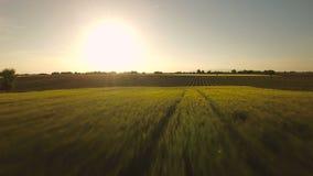 Frankreich-Landschafts-Antenne stock video