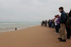 Frankrijk, Normandië, 6 Juni, 2011 - de Studenten bekijken militair de helm van de V.S. in Normandië royalty-vrije stock fotografie