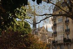 FRANKRIJK, PARIJS - OKTOBER 20, 2017: De kathedraal van Notredame de paris tussen de boomtakken royalty-vrije stock foto's