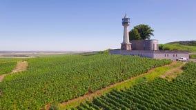 Frankrike Champagne som är regional parkerar av Montagne de Reims, den flyg- sikten av fyren av Verzenay, arkivfilmer