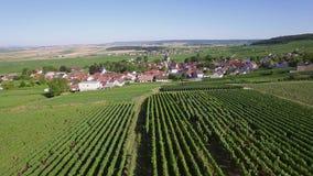 Frankrike Champagne som är regional parkerar av Montagne de Reims, flyg- sikt av Ville Dommange arkivfilmer
