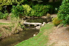 Frankrike den pittoreska japanträdgården av Aincourt Royaltyfri Fotografi