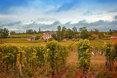 Frankrike landskap Royaltyfria Foton