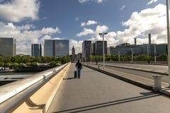 Frankrike Paris, Pont Charles de Gaulle royaltyfri bild