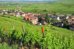 Frankrike pittoresk by av Riquewihr i Alsace Royaltyfri Bild