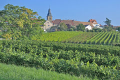 Frankweiler,german Wine Route,Palatinate Stock Image