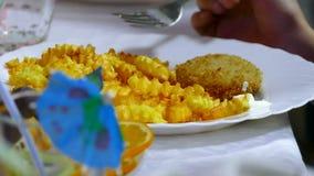 Frans aardappelgebraden gerechten en lapje vlees op een plaat met a stock video