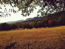 Frans berglandschap in de herfst stock fotografie