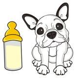 Frans buldogpuppy en een fles melk vector illustratie
