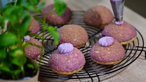 Frans dessert met deegcraquelin met bosbessenroom stock video