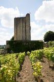 Frans die dorp Saint Emilion door Tour du Roy wordt overheerst stock foto
