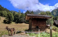 Frans landelijk landschap op berggebied stock foto's