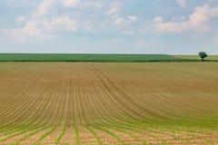 Frans landschap stock foto's