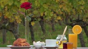 Frans ontbijt op wijngaardenachtergrond, stock videobeelden