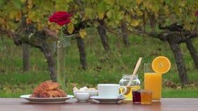 Frans ontbijt op wijngaardenachtergrond, stock video