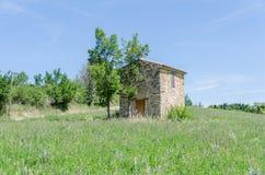 Frans platteland in de Provence stock foto