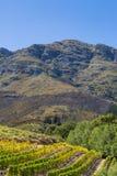 Franschhoek-Landschaft Stockfoto
