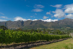Franschhoek Royalty Free Stock Images