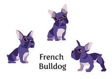Franse buldog vector illustratie