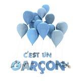 Franse de geboorteaankondiging van de babyjongen Royalty-vrije Stock Fotografie