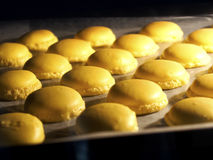 Franse eigengemaakte vanillemakaron Stock Foto