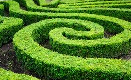 Franse formele tuin in Parijs Stock Afbeelding