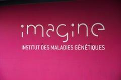Franse Institut veronderstelt royalty-vrije stock afbeelding