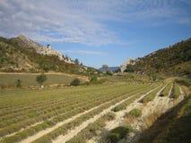 Franse Landbouwgrond Stock Foto