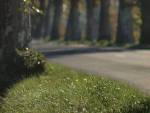 Franse plattelandsweg op de herfst Stock Fotografie
