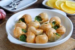 Franse Slakken met kruiden, boter, knoflook royalty-vrije stock fotografie