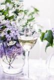 Franse witte wijn - wijnmakerij, boete het dineren en vieringsconcept stock foto's