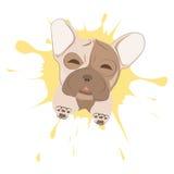 Fransk bulldogg royaltyfri illustrationer