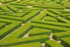 Fransk formell trädgård i Domainen de Villarceaux Royaltyfria Foton