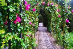 Fransk formell trädgård på Generalife granada Arkivbilder