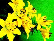 Fransk lilja i berlin Royaltyfria Bilder