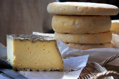 fransk livstid för ost fortfarande royaltyfria foton