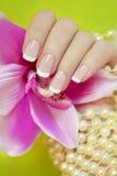 Fransk manicure. Arkivbild