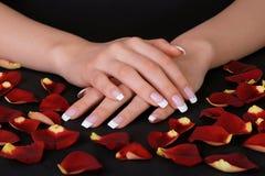 fransk manicure Royaltyfria Bilder