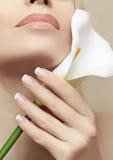 fransk manicure Fotografering för Bildbyråer