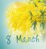 Fransk mimosa stock illustrationer