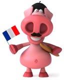 fransk pig Royaltyfria Bilder