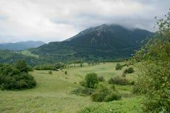 fransk pyrenees för dag fjäder royaltyfri fotografi
